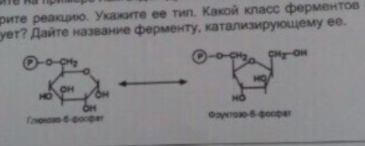 BCC67CDC-01A0-481B-8CDC-68F35EB46696.jpeg