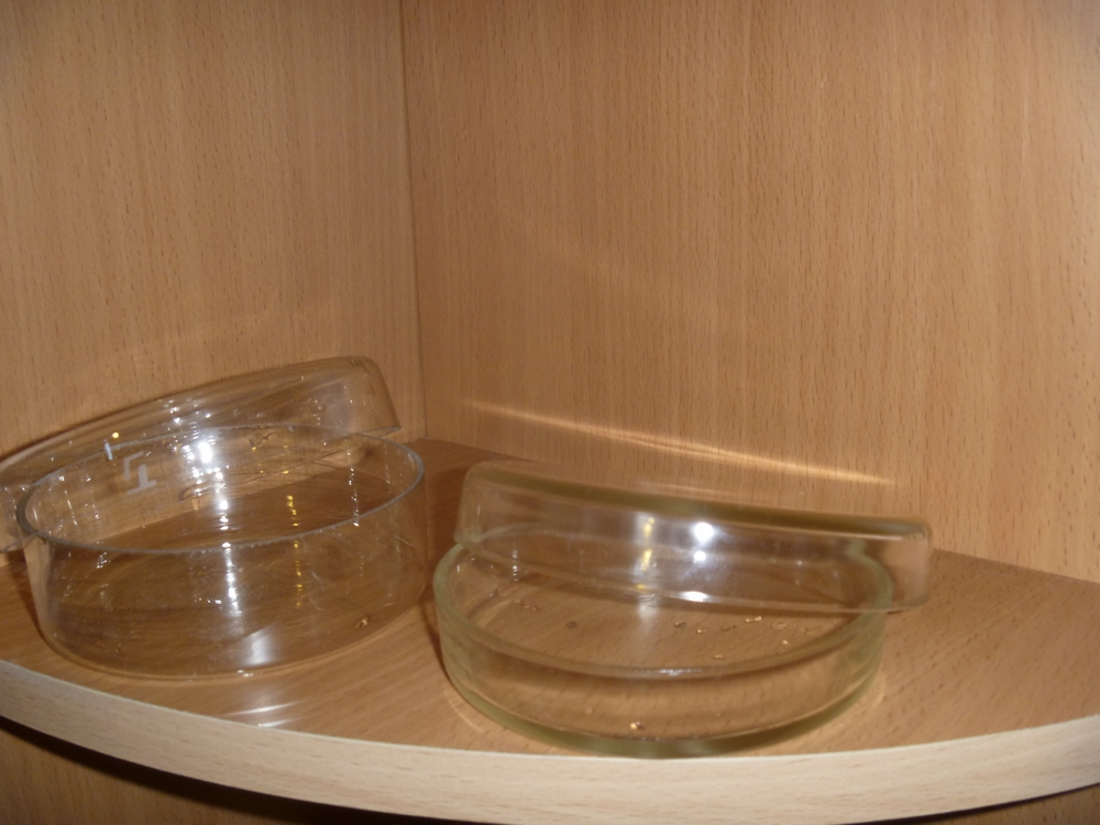 Чашка Петри Коха.JPG